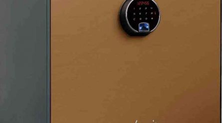 Top 8 Home Safes of 2020-2021