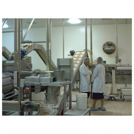 Securikey Food Processing Mirrors