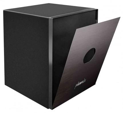 Phoenix Spectrum Plus LS6012FB - removable front face