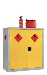 Probe Flammable Hazardous Low Double Door Steel Cabinet