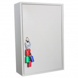 KeySecure KS50P Padlock Storage Cabinet 50 Padlocks - Safety Lockout Padlock Hasp Lock