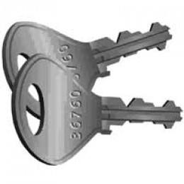 Lion Locker Key - Replacement Key for Lion Lockers