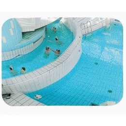 Indoor Swimming Pool Convex Safety Mirror - Vialux 908