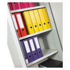 Chubbsafes Archive Fire Security Cabinet Size 325 showing files