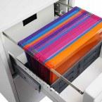 Phoenix Vertical Firefile FS2252E - filing drawer